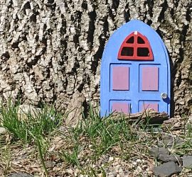 small blue door to a tree trunk