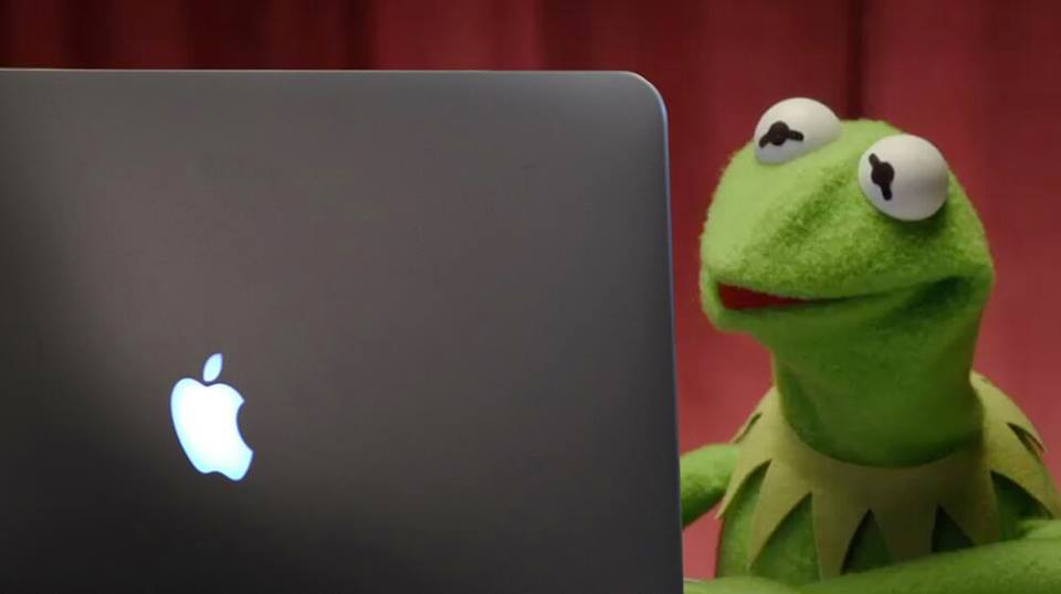kermit the frog looking at screen of Mac laptop